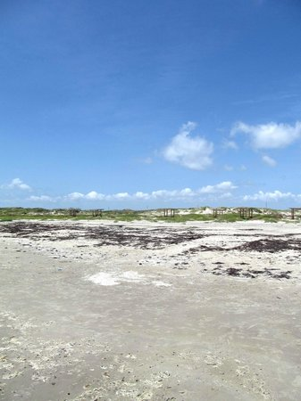 Mustang Island State Park: Back beach