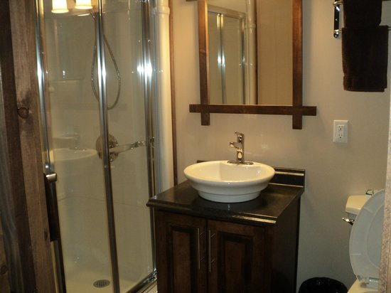 Iceberg Alley Bed & Breakfast : Bathroom of our suite
