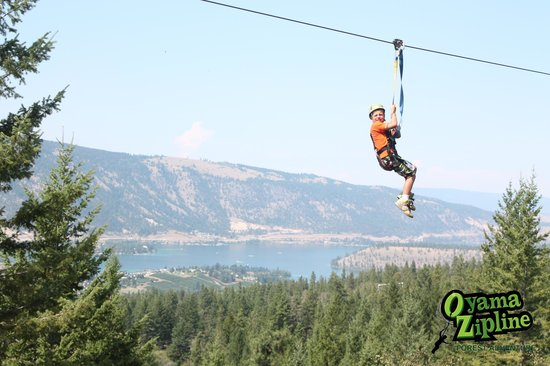 Oyama Zipline Adventure Park: my seven year old