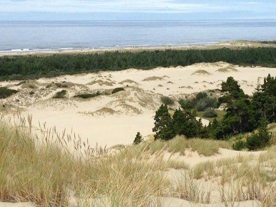 John Dellenback Dunes Trail