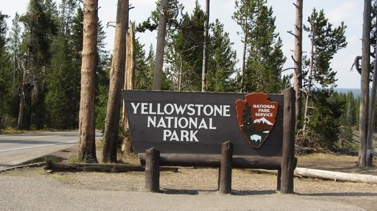 Grizzly Country Wildlife Adventures: Yellowstone entrance sign