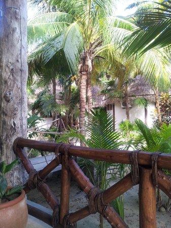 Xaloc Resort: Vista desde el comedor externo