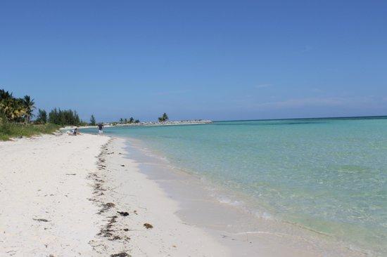 Coconutz Cruisers Fortune Bay Beach