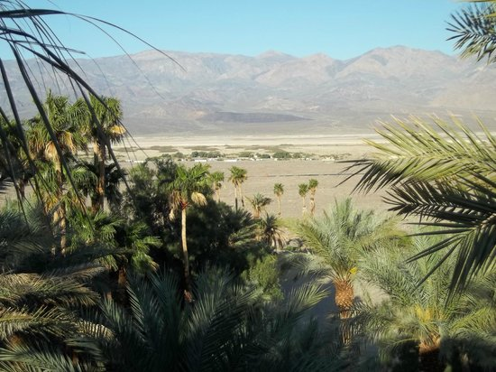 Furnace Creek Resort & Fiddler's Campground : Looking from the Inn to the Ranch