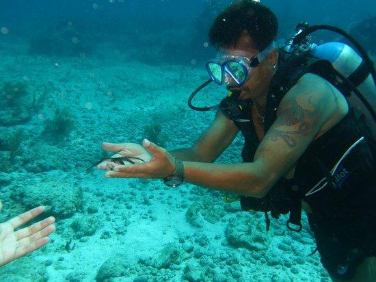 Cancun Diving College : Eric un gran guia