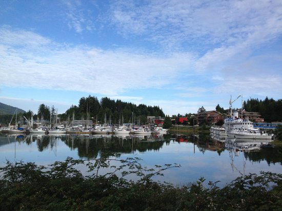 Ucluelet Campground: View from campsite