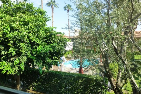 Miramonte Indian Wells Resort & Spa: Adult pool and balcony view