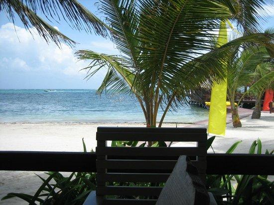 Ramon's Village Resort: view from restaurant