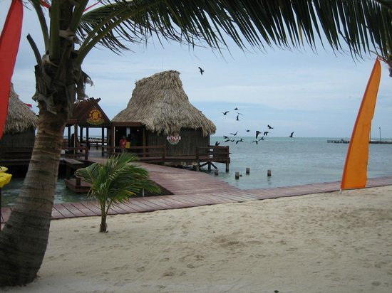 Ramon's Village Resort: dive pier
