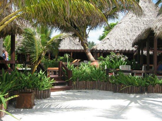 Ramon's Village Resort: hotel grounds