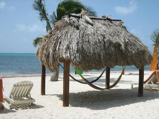 Ramon's Village Resort: hammocks on beach