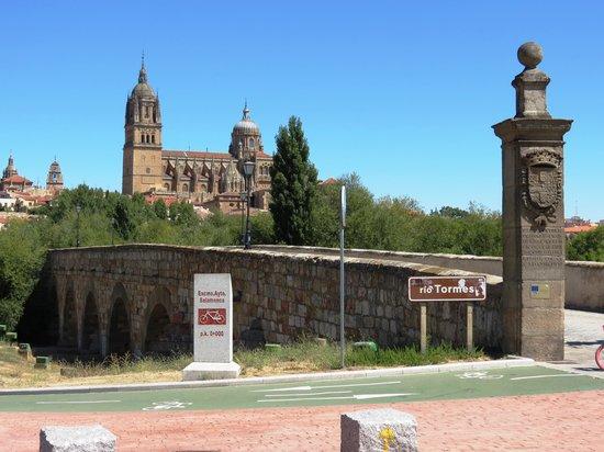 Old Cathedral (Catedral Vieja) : Vista do exterior da Catedral ao longe