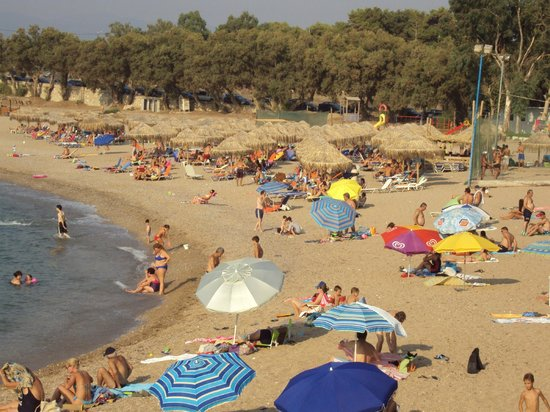 En plo: Ai Lagoudis packed with swimmers