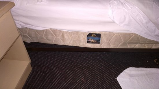 Red Roof Inn Culpeper: bed frame / box spring broken