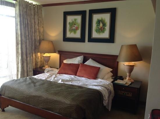 Amaya Hunas Falls: nice room