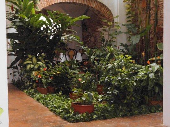 Alfiz Hotel: jardim