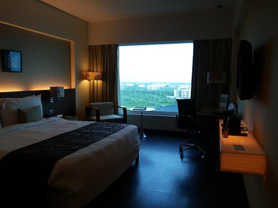 The Fern Ahmedabad: View from my room 712
