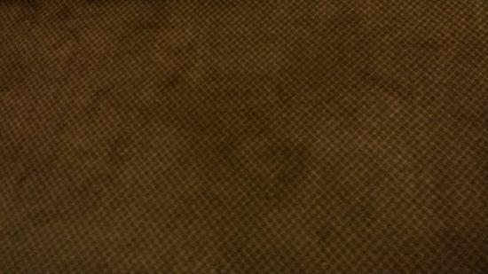 Travelodge San Ysidro: The Carpet that smells like urine