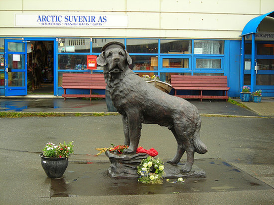Honningsvag, Norway: Sea Dog Bamse 1937-1944