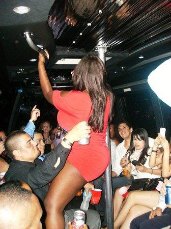 Nite Tours : Party Bus w/ Host Angelia