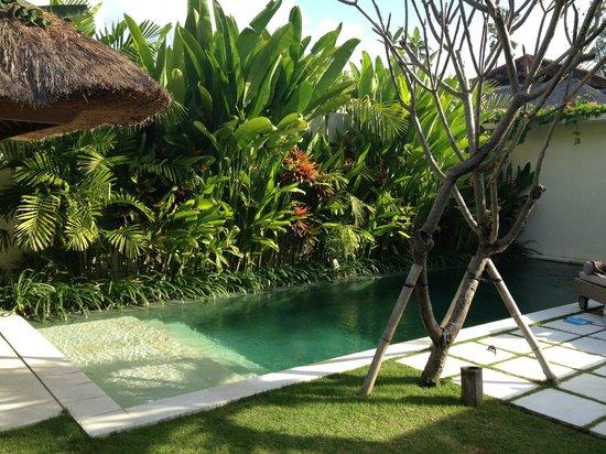 Villa Bali Asri Batubelig : The pool