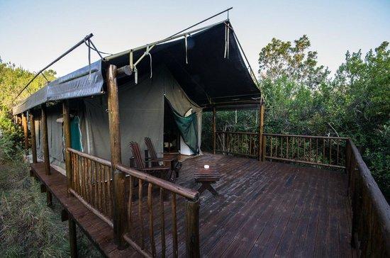 Inkwenkwezi Private Game Reserve Safari Lodge: Valley Tent