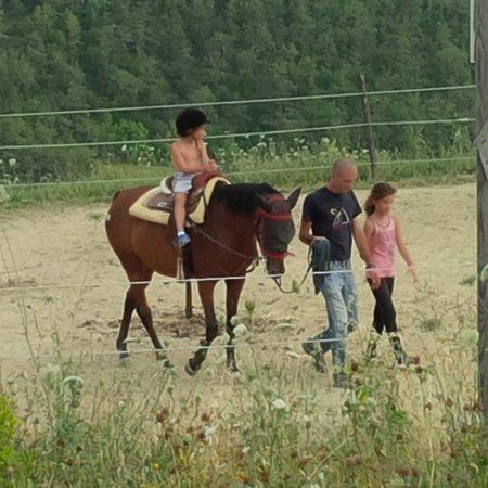 Agriturismo il Moro: Il fratellino a cavallo