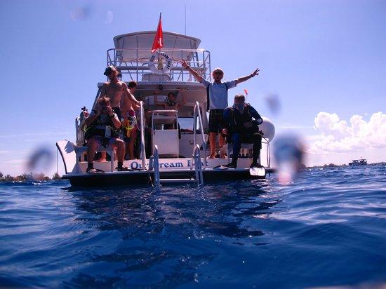Living The Dream Divers Boat Photo De Living The Dream Divers Seven Mile B