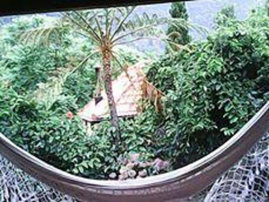 Quinta do Arco: Vista da Sala