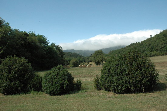 Agriturismo e Ristorante Sanvitale: panorama
