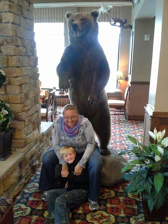 Hilton Garden Inn Anchorage: our first Alaskan bear