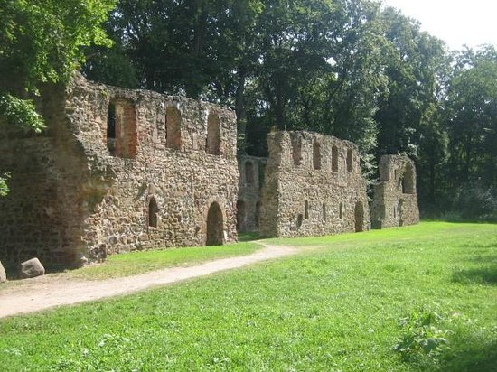 Hotel Kloster Nimbschen: The Cloister ruins, just opposite the annex.