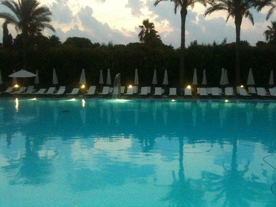 Green Paradise: piscina all'alba