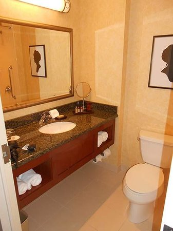 Hartford Marriott Downtown : The bathrooms are not spacious but they certainly work fine.