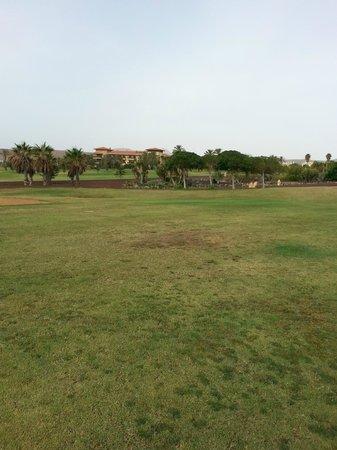Fuerteventura Golf Club: more patchy fairways