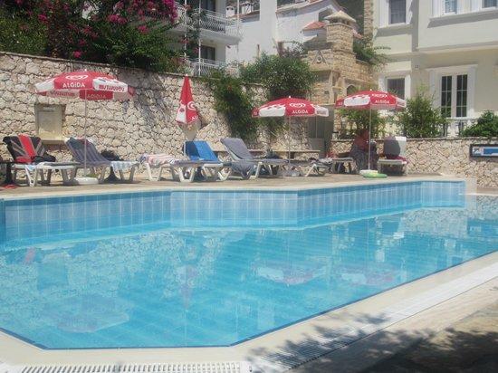 Hotel Dionysia: Sparkling pool