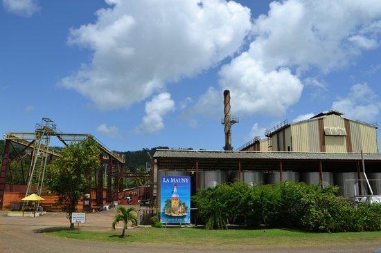 Riviere-Pilote, Martinica: La distillerie
