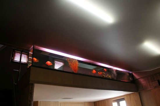 Hotel Salvators: Lit et Mezzanine