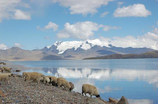 Tibet, China: Lake Puma Yumco