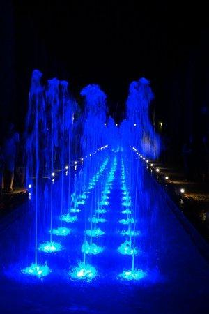 Casa de los Azulejos : fountains at the Alcazar by night