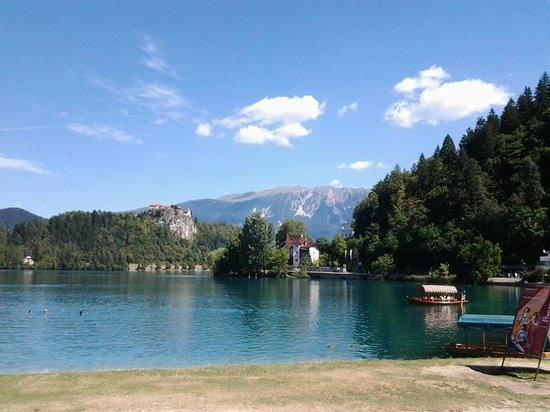 Camp Bled: Spiaggia lago