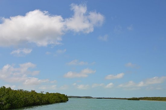Tranquillity On The Bay Resort: Inland River Turtle Sound