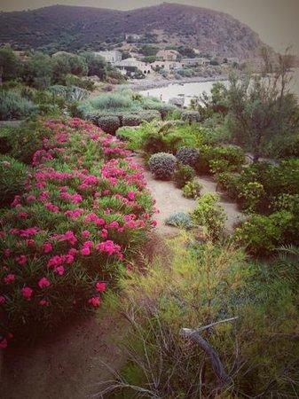 Best Western Santa Maria : garden