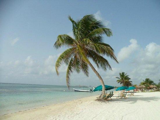 Posada Pachamama: Spiaggia