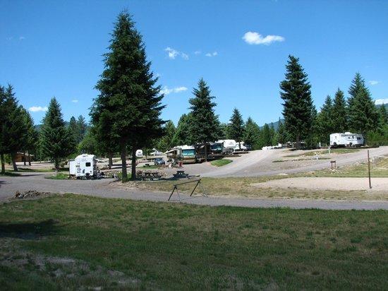 Nugget RV Park : Spacious sites and a five acre dog park
