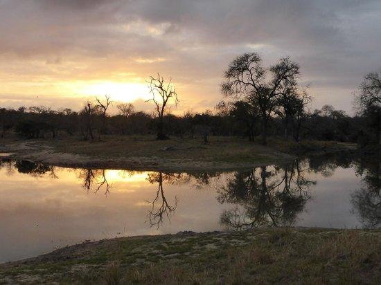 Simbambili Game Lodge: A beautiful sunrise