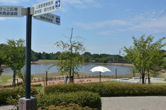 Kuragaike: 鞍ヶ池