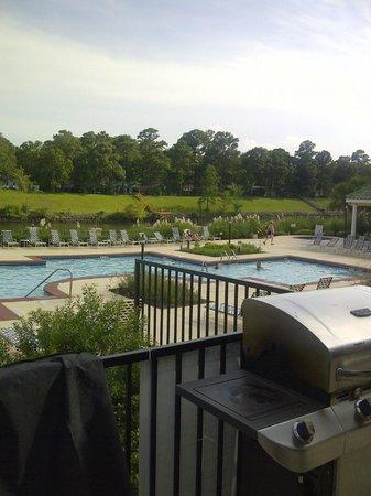 Barefoot Resort : Pool on the intercoastal.