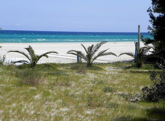 Residence Hotel Universo : Spiaggia Adiacente