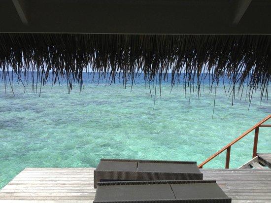 Kuramathi Island Resort: The view every monring from Water villa